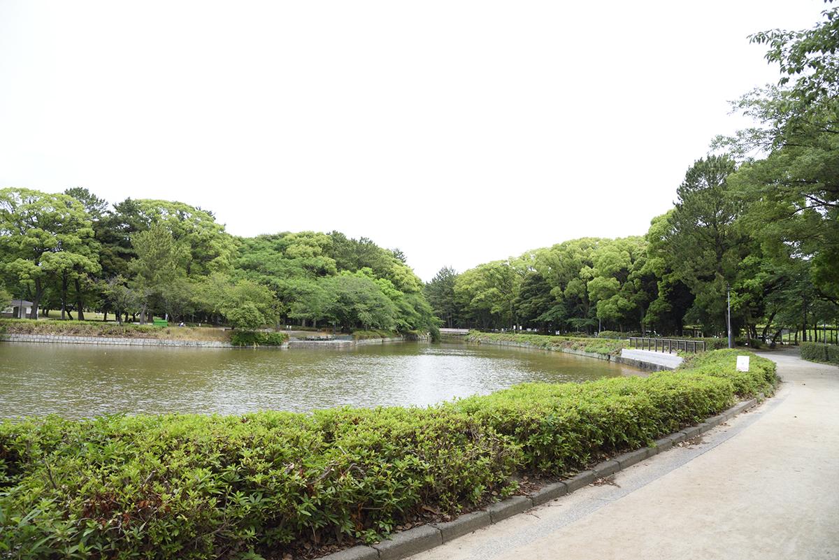 http://www.record-jp.com/news/entry_images/shumoku-hp022.jpg